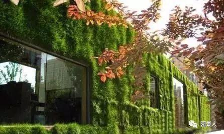 垂直绿化·会呼吸的墙壁_28