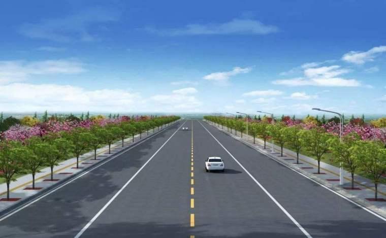 一级公路改建项目质量风险管理办法(word)