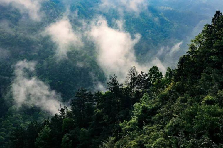 木屋民宿,置身360°自然美景_80