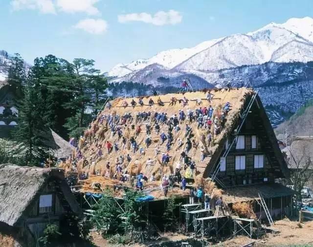 城市套路深,我想回农村,8个最美乡建让人想逃离北上广!