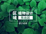 区域植物设计—东北区