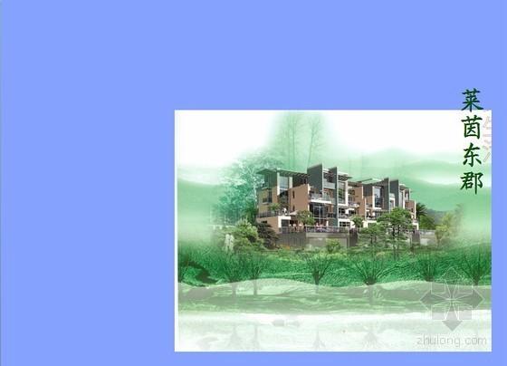 [南京]房地产社区项目工作流程报告