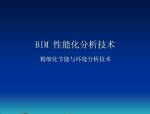 BIM性能化分析技术