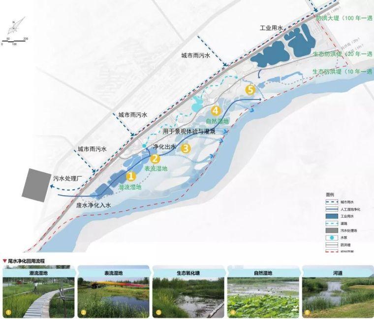 案例 渭柳湿地公园_12