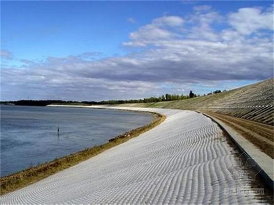 [山东]堤防工程监理规划