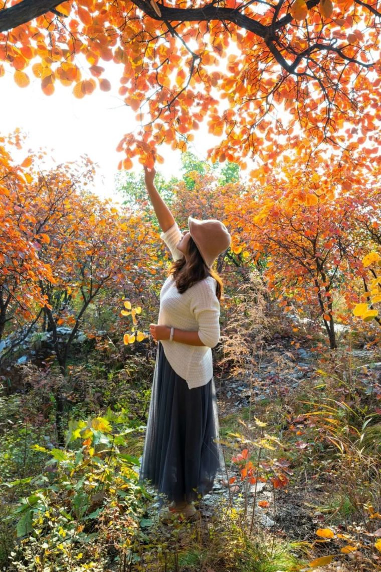 这里的秋天会画画,住进获国际大奖的最美民宿:姥姥家_28