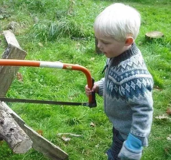 森林幼儿园|让森林疗养从小开始??