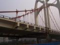大跨度桥梁与城市桥梁之梁的构造(136页)