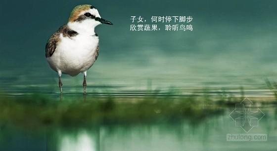 [四川]豪华别墅项目产品营销推广方案(图)