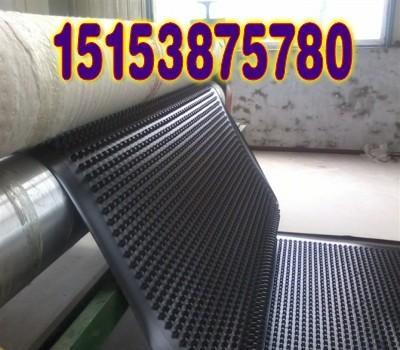 禹城塑料滤水板;禹城地下车库排水板;蓄排水板