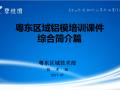 碧桂园铝模板施工技术综合介绍