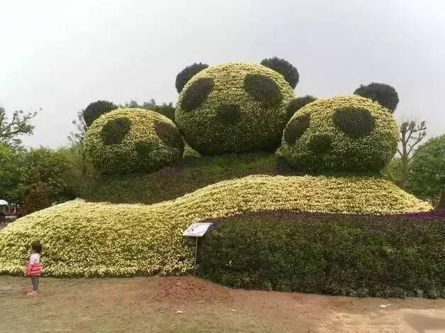 80个极美植物雕塑_45