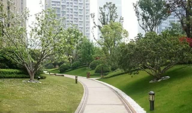景观中的园路设计_10