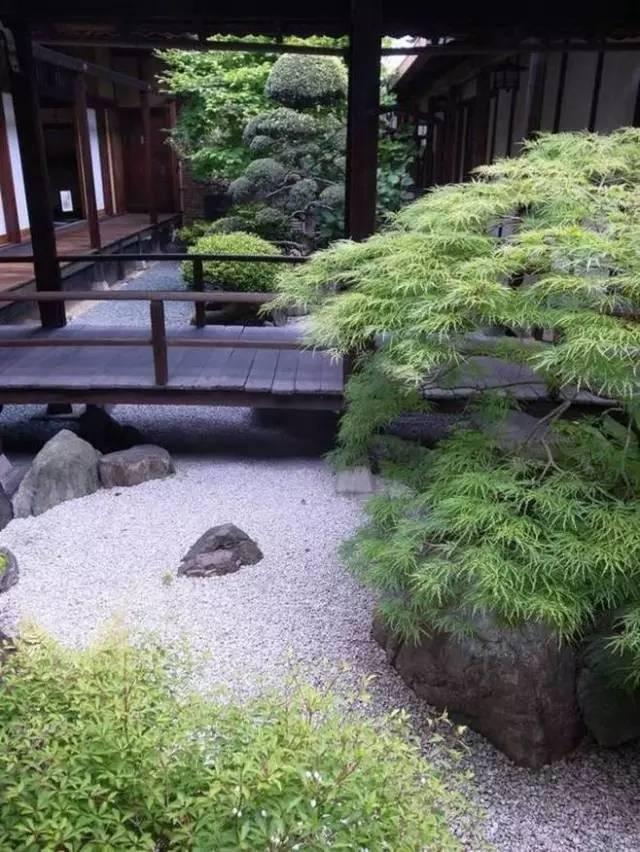 不同风格的庭院植物配置,超详细!