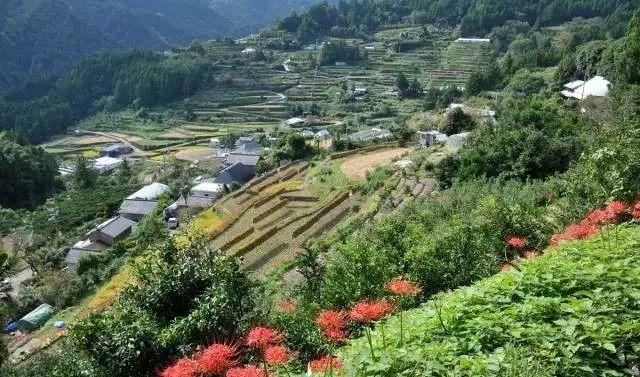 10个日本最美小镇_2