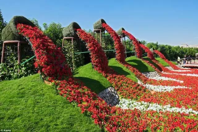 迪拜的花卉展览,全世界规模最大!你肯定没看过!_11