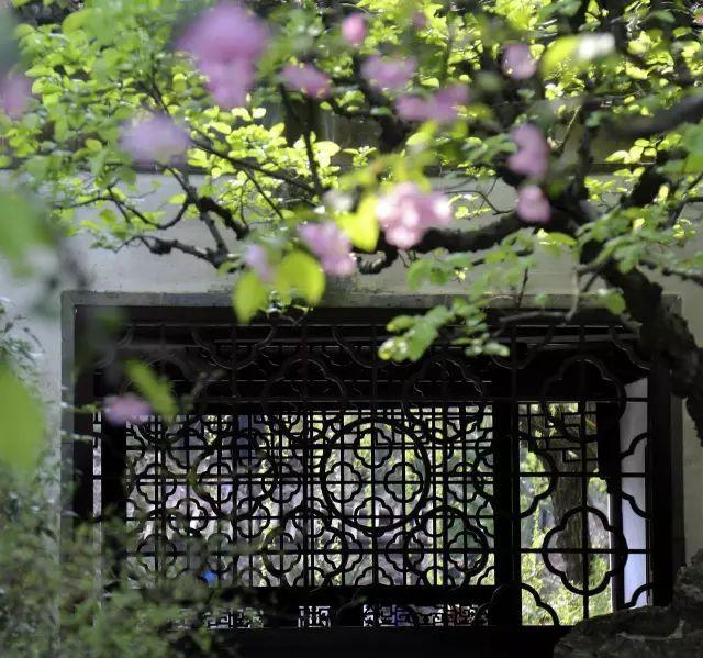 中国古典园林|留园_6