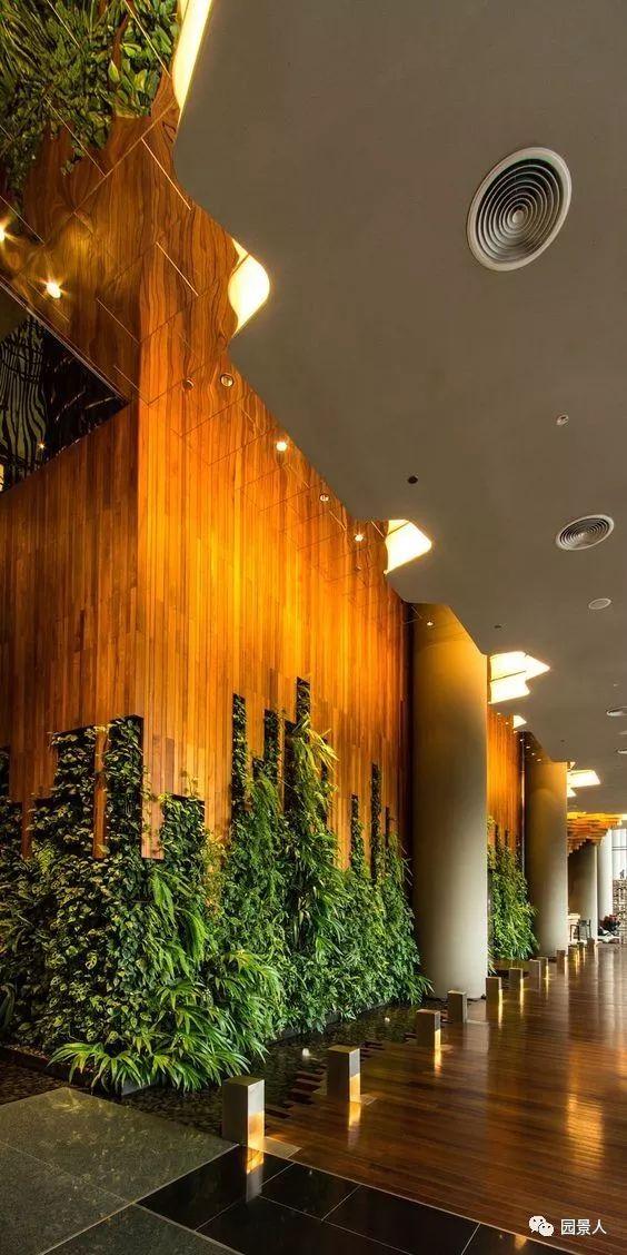 垂直绿化·会呼吸的墙壁_29