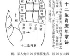 陈益峰:地支的六合与六害