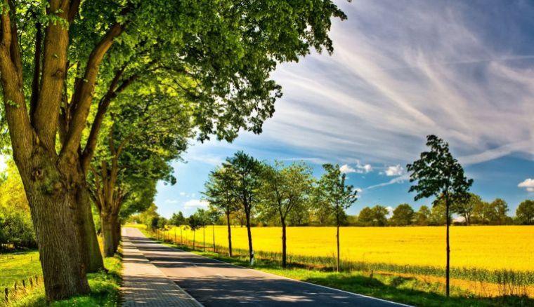 论公路沿线的景观规划与实施_2