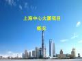 [地标性建筑]沪上第一高楼-上海中心大厦施工概况介绍(87页,丰富附图)