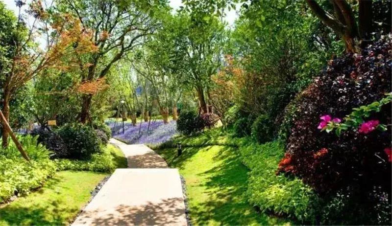 植物造景·实用景观设计来一波_24