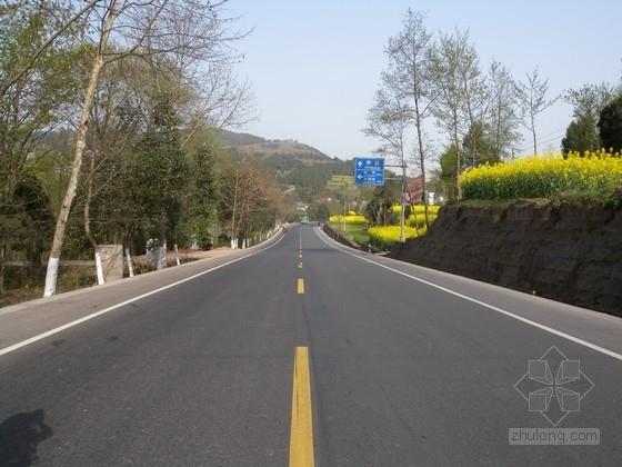 [重庆]低等级农村道路施工图设计(含预算材料
