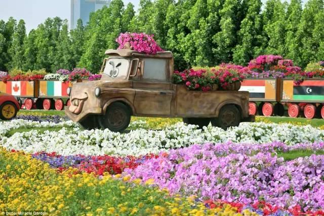 迪拜的花卉展览,全世界规模最大!你肯定没看过!_16