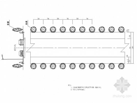双向2车道城市道路绿化工程设计图