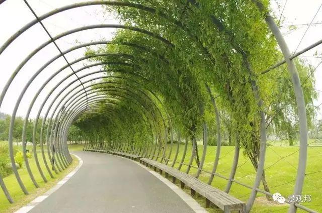 超美的爬藤花架