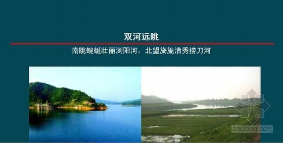 悦山湖项目整合推广规划方案(115页 全新理念)