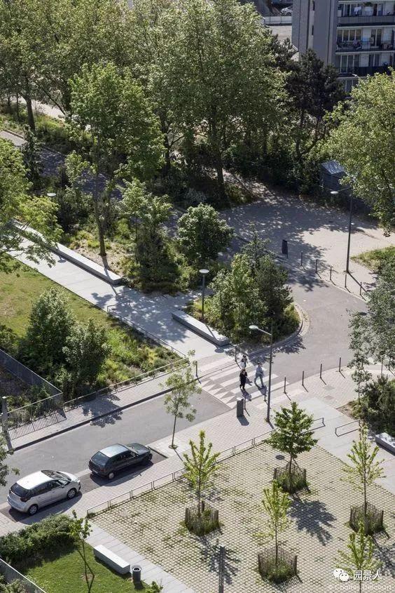城市干道植物配置,实用干货不得不看!_34