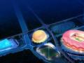 绍兴体育中心体育场的BIM应用分析.