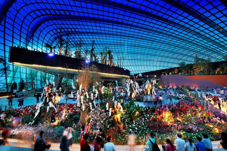 新加坡世界级超级温室花园-12