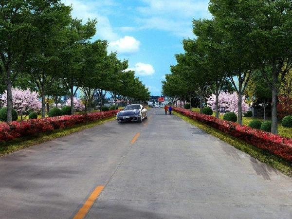 [玉林]市政道路绿化工程施工方案