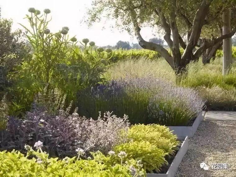 居住区与别墅庭院景观设计的差异_24