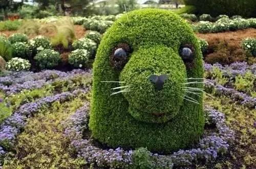 80个极美植物雕塑_40