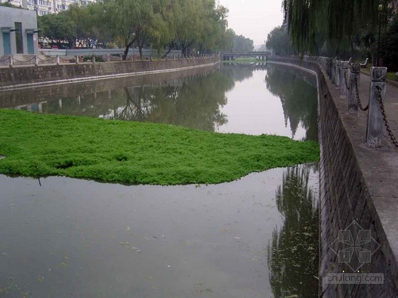 城市内河河道综合治理工程设计方案(含超清图片)