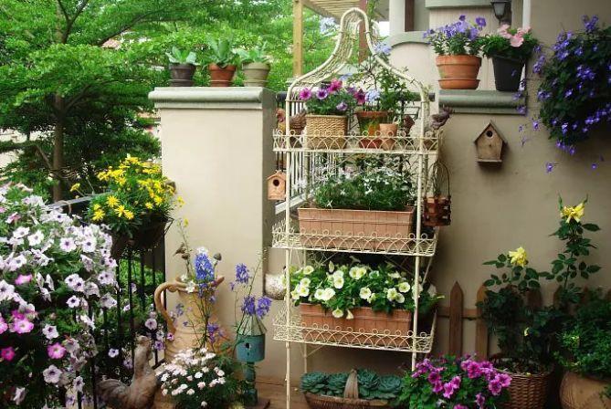 想要这样一个阳台,过小日子,看花开_6