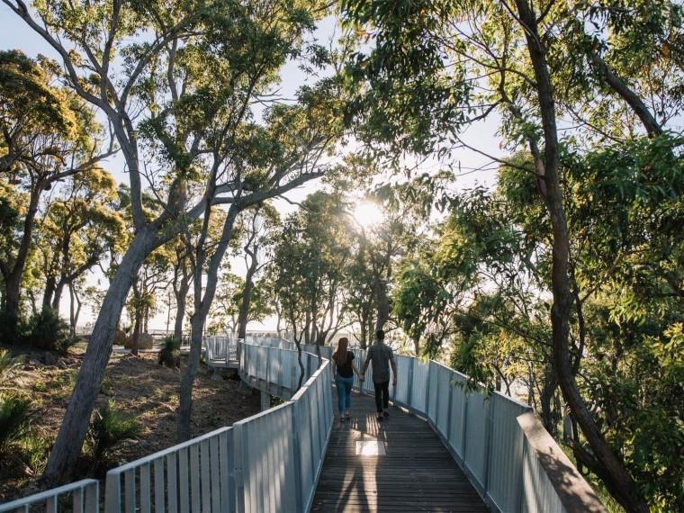 澳大利亚阿彻山顶高架观景栈道景观