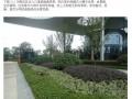 小区绿化灌木地被种植表现案例(图文并茂)