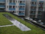 绿色建筑屋面的实践与设计