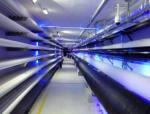 地下综合管廊建设可解决传统管线问题