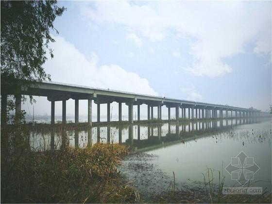 特大型装配式桥梁运梁及桥面施工技术汇报41页(附图丰富)