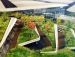 屋顶上的园林——屋顶花园景观设计及施工