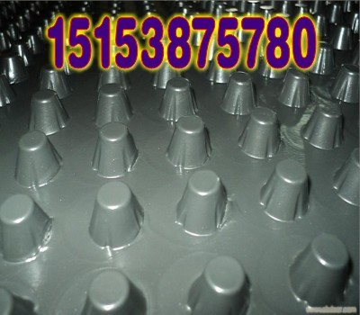 朔州塑料滤水板;朔州地下车库排水板;蓄排水板
