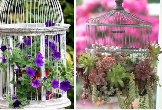 21种方法种花,比在花盆里美十倍!_18