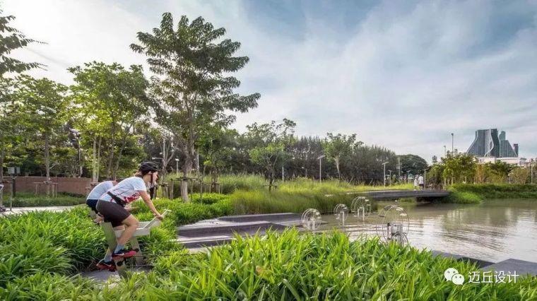 2019WLA世界建筑景观奖揭晓|生态创新_34