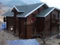 私人木别墅建造工程实例