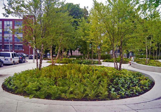 加拿大多伦多JoelWeeks公园景观设计_10
